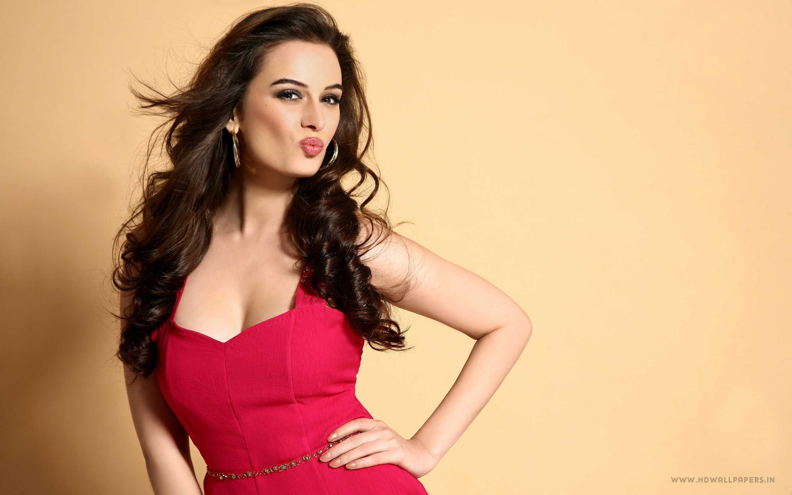 Evelyn Sharma Bollywood...