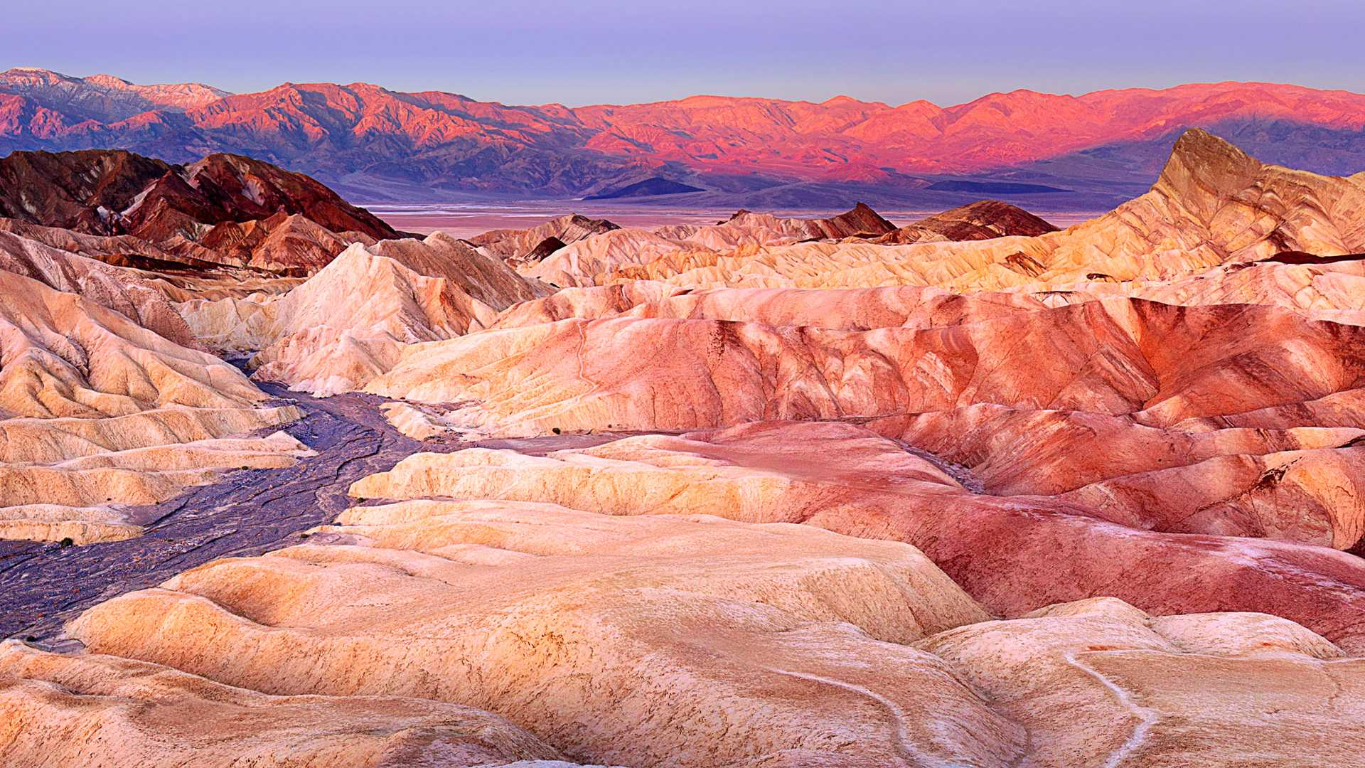Zabriskie Point Death...