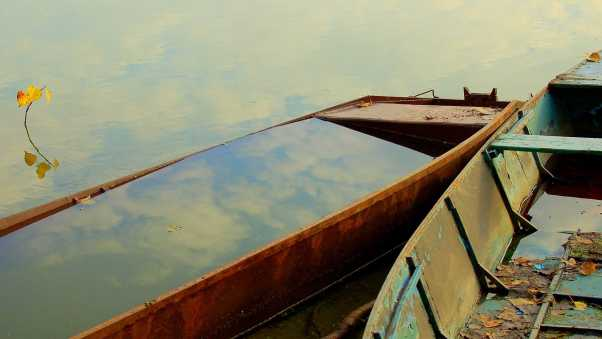 boats, water, leaves