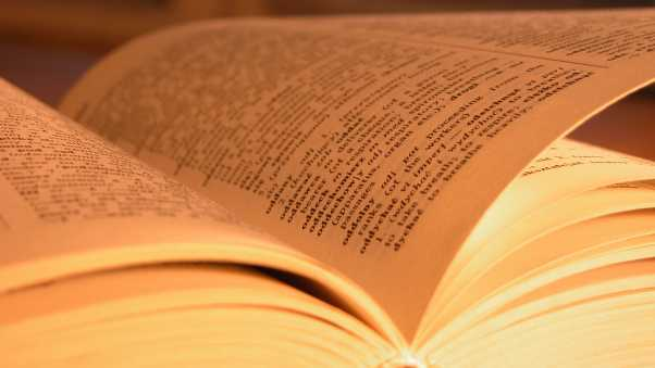 book, pages, reading