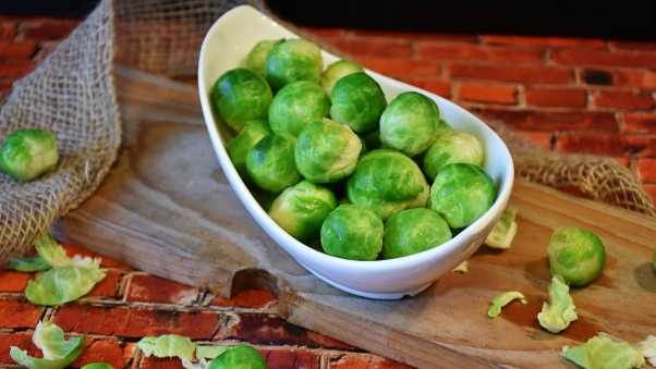 brussels sprouts, vegetable, dish