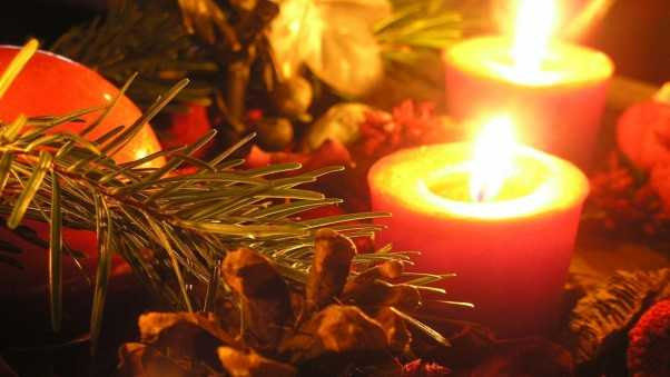 candles, bump, pine needles