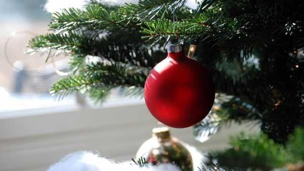 christmas decorations, ball, needle