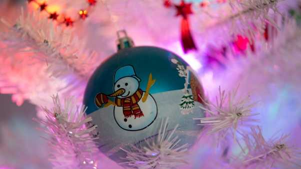 christmas decorations, snowman, branches