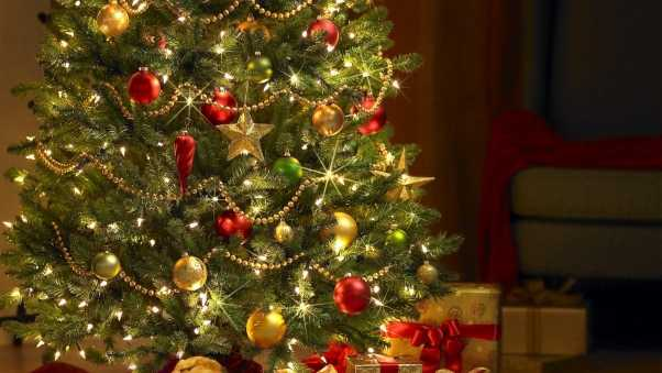 christmas tree, gifts, decorations