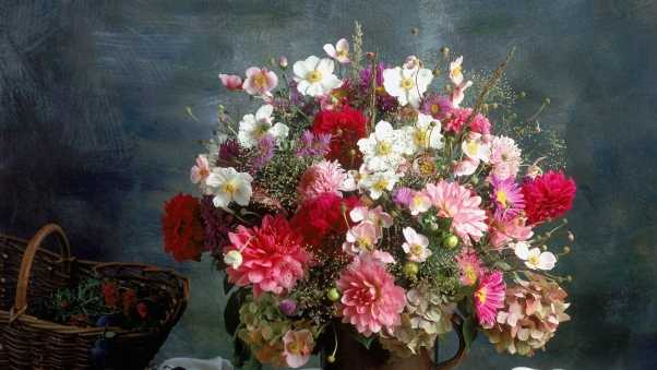 chrysanthemums, flowers, bouquet