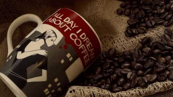 cup, coffee, coffee beans
