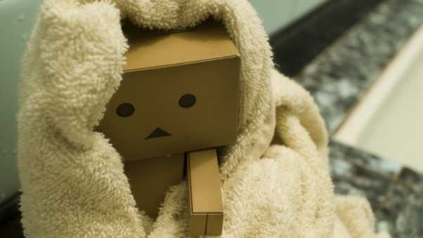 danboard, toys, cold