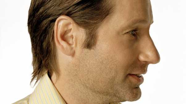 david duchovny, actor, male