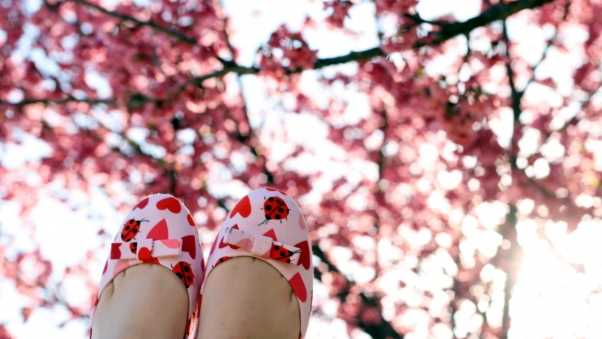 feet, shoes, branches