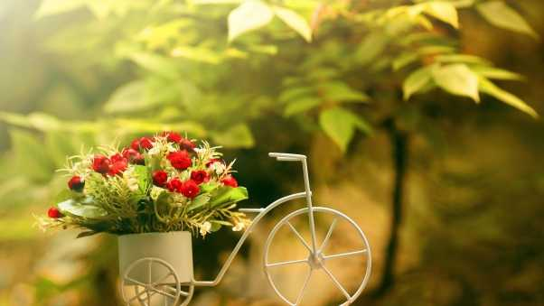flowers, capacitance, bike