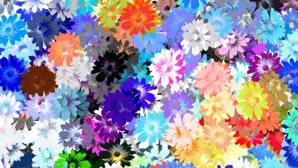 flowers, colorful, drawing