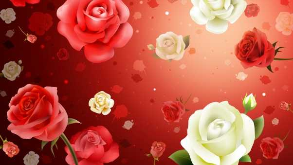 flowers, roses, background