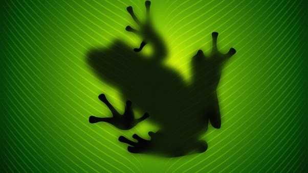 frog, reflection, vector