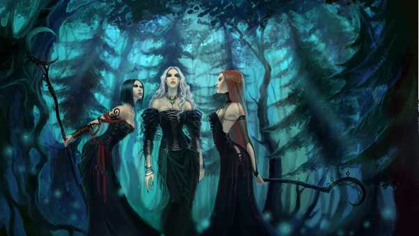 girls, witches, wood