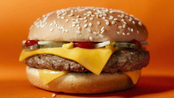 hamburger, fast food, meat