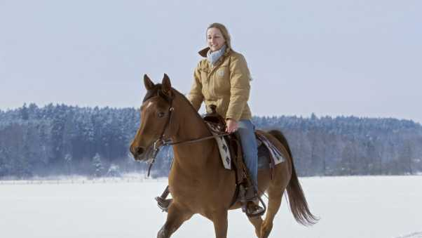 horse, girl, winter