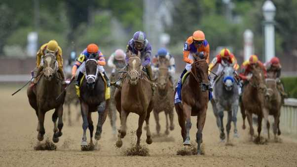 kentucky derby, kentucky derby 2015, kentucky derby odds