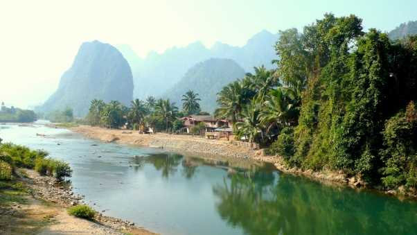 laos, tropics, palm trees