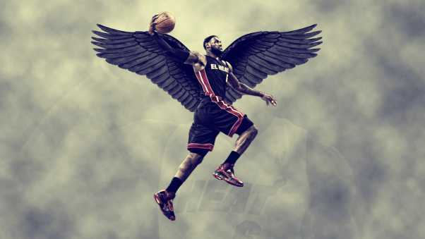 lebron james, miami heat, wings