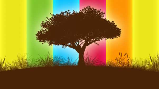 line, tree, colorful