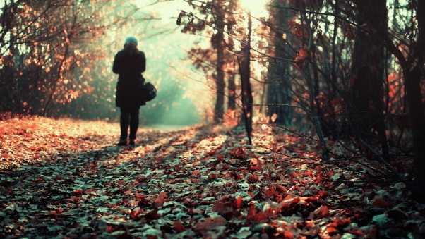 loneliness, lots of leaves, girl