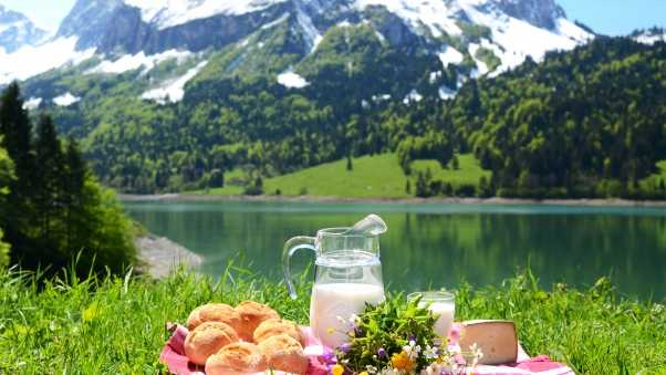 milk, nature, mountains