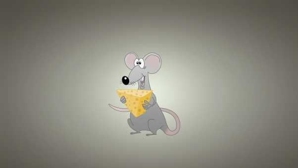 mouse, background, cheese