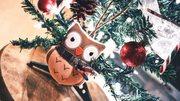 owl, toy, christmas