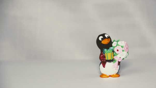 penguin, toy, flowers