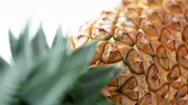 pineapple, fruit, ripe