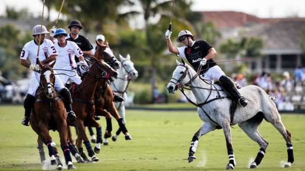 polo, sportsmen, blow
