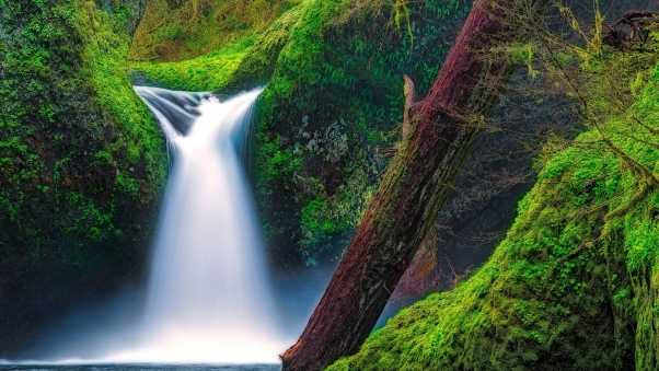 punch bowl falls, eagle creek, columbia river gorge