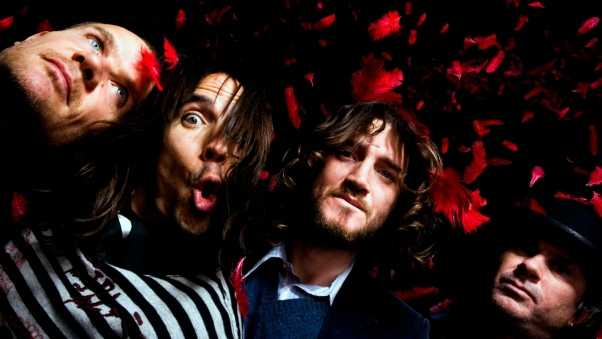 red hot chili peppers, surprise, look