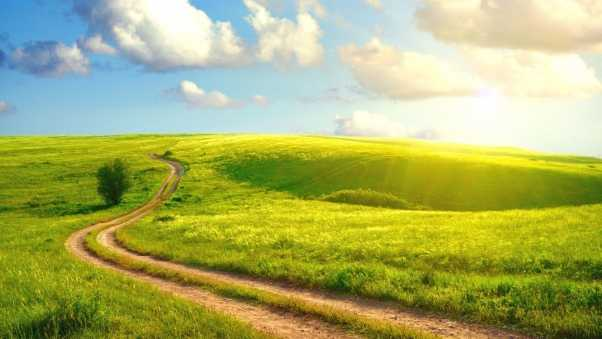 road, field, country