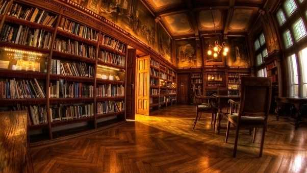 room, design, library