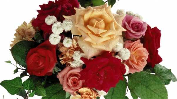 roses, bouquets, carnations