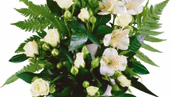 roses, lilies, white