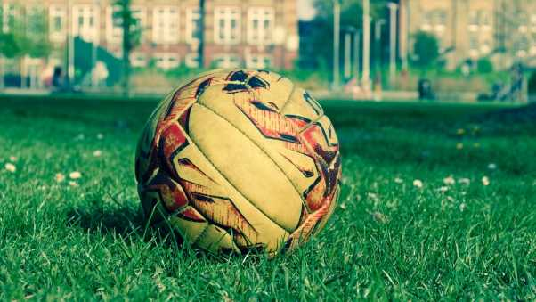 soccer ball, field, grass