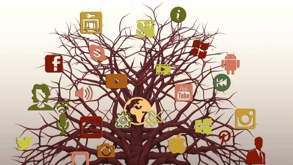 social networking, tree, logos