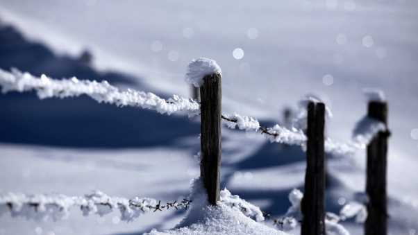 stakes, snow, protection