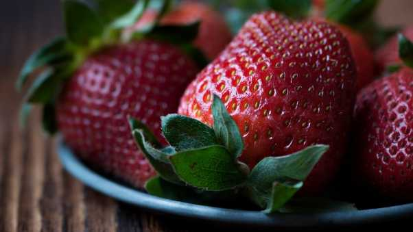 strawberry, berry, close-up