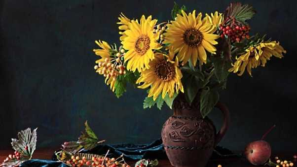 sunflowers, berries, flower