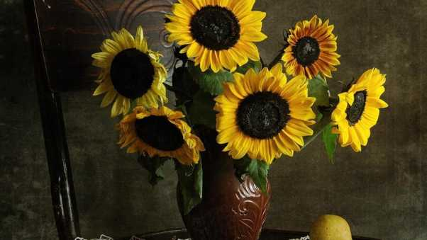 sunflowers, bouquet, vase