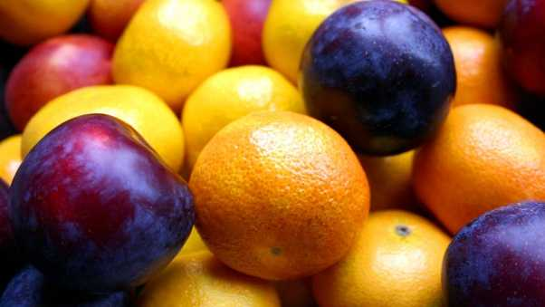 tangerine, plum, fruit