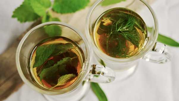 tea, grass, mint