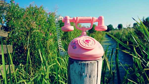 telephone, toy, grass