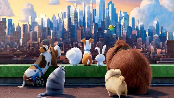 the secret life of pets, animals, cartoon