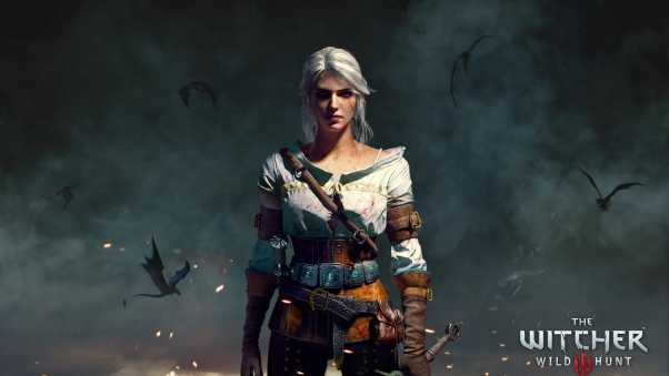 the witcher 3, wild hunt, character