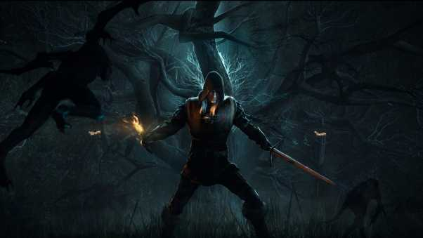 the witcher 3, wild hunt, forest